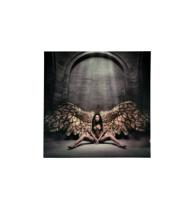 Foto ANGEL CAIDO 100x100 - Schuller 769932